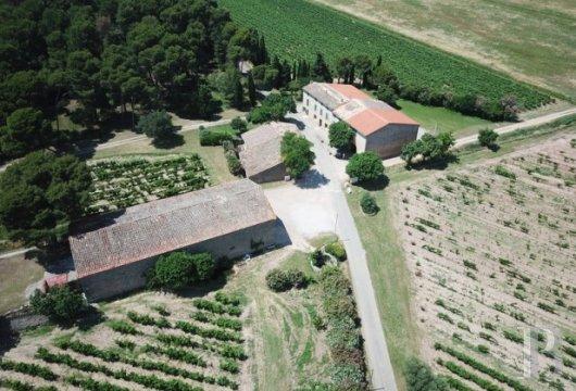 domaine viticole - 10