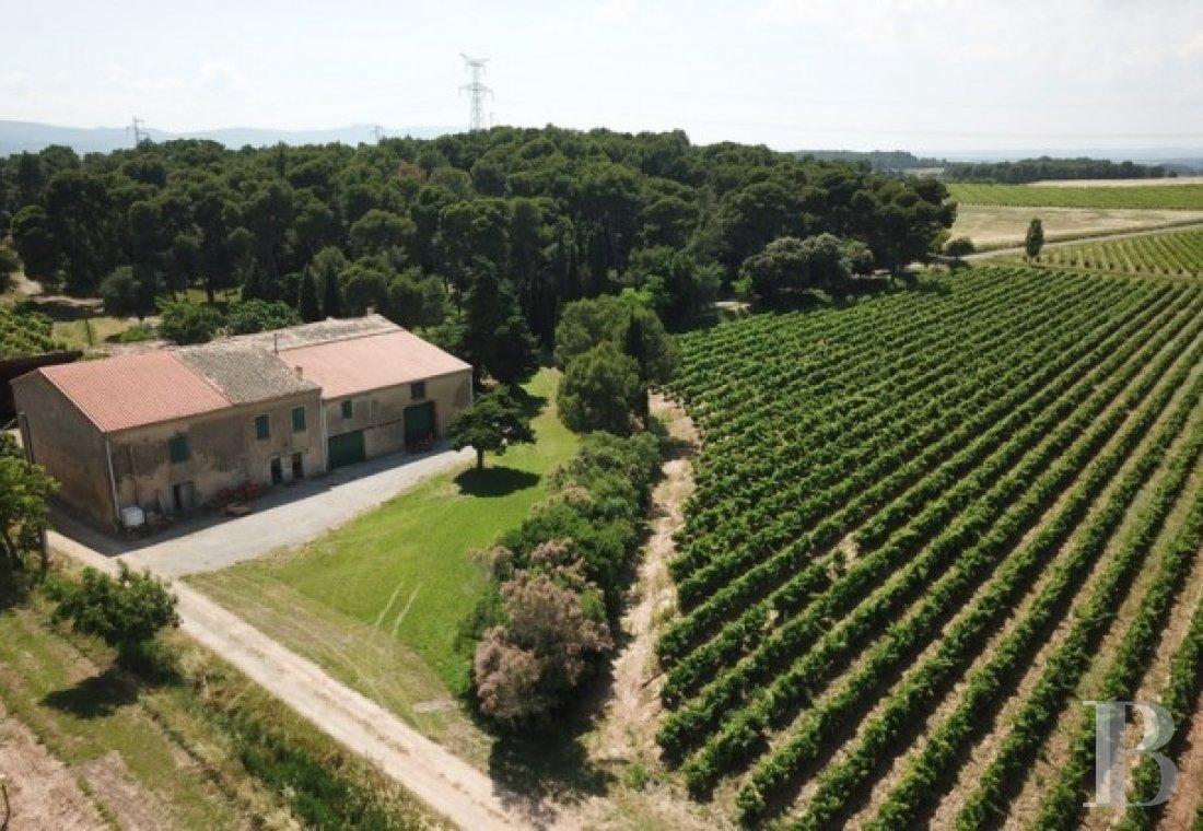 domaine viticole - 1