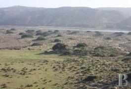 terrain ruines - 4
